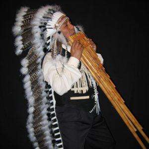 apache indiaan vk