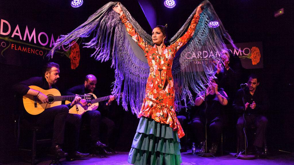 cuadro flamenco show