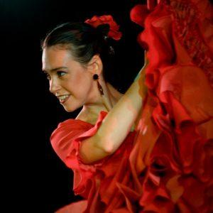 flamencoshow los del sol (2)