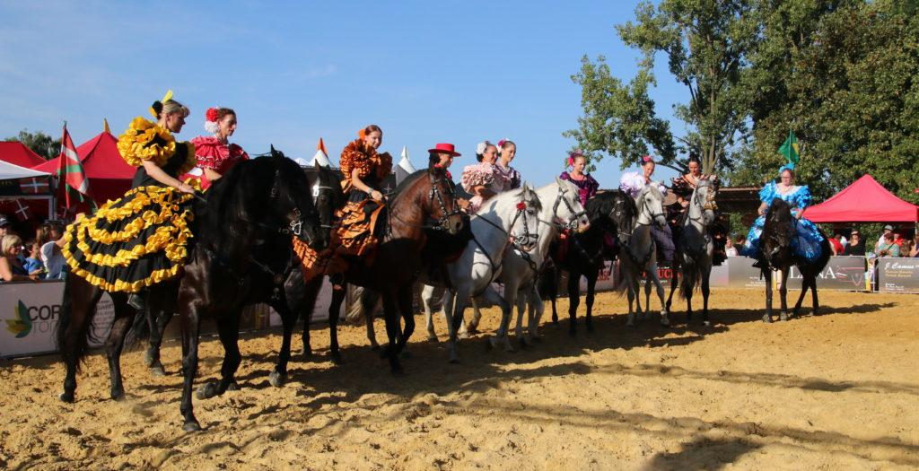 Spaanse paardenshow, paardenshow, Andalusische paardenshow, caballo andaluz, paarden show