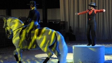 flamenco, flamenco danser, paardenshow